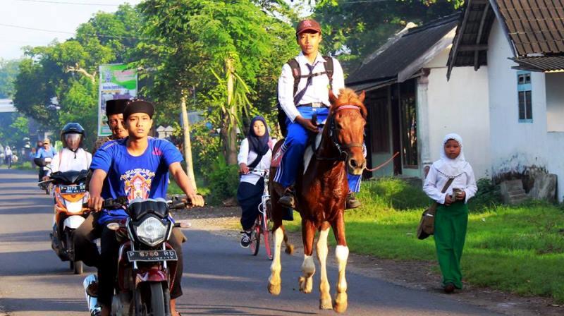 Transportasi Kuda untuk Sekolah