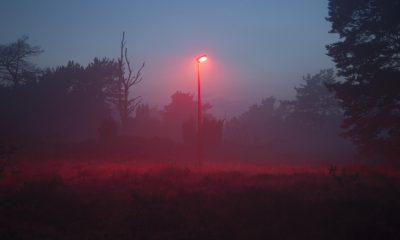 Viral Video Cahaya Merah Jatuh Dari Langit , Akan Ada Apa Lagi?